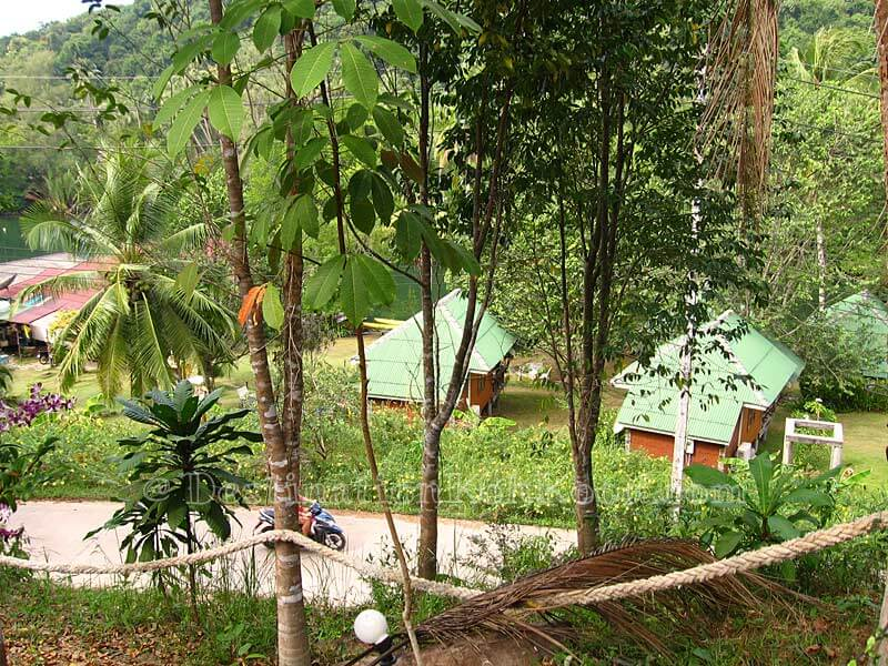 View from Fan Huts - Mangrove Bungalow