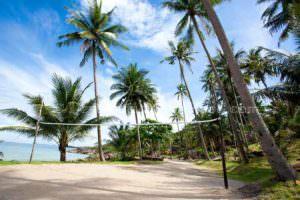 Beach - Koh Kood Beach Resort