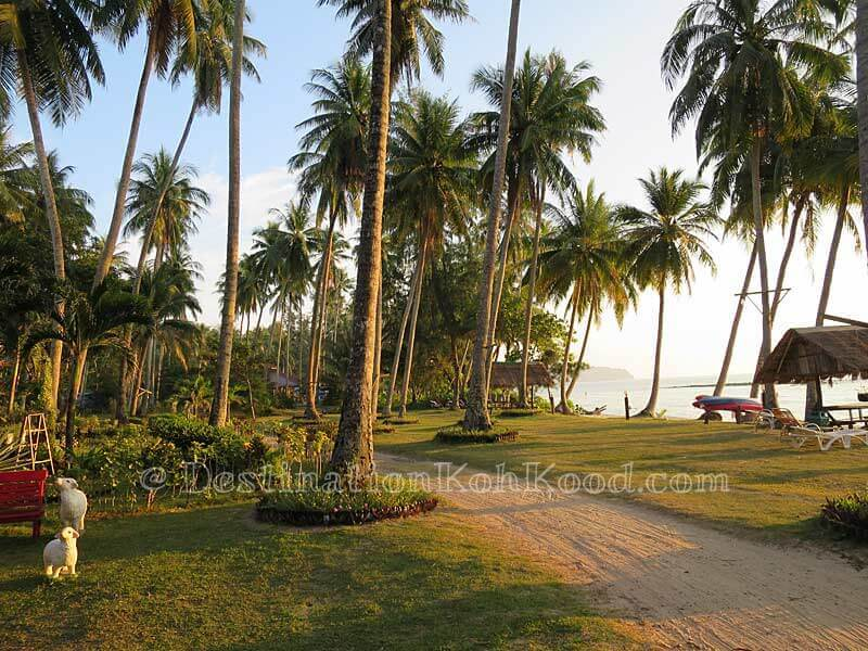 Beachfront - Koh Kood Cabana