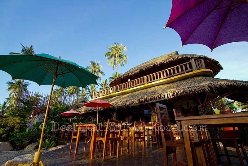 Cocktail Bar & Restaurant (2 Floors) - Tinkerbell Resort