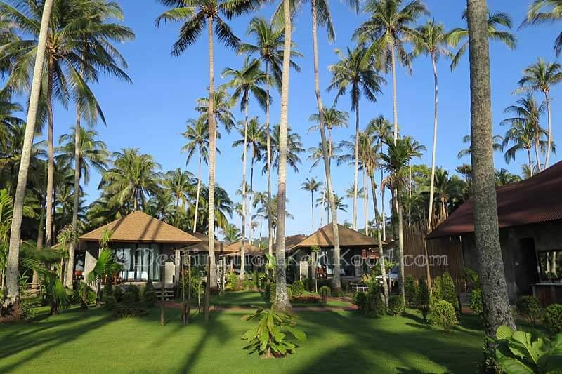 Garden - Medee Resort