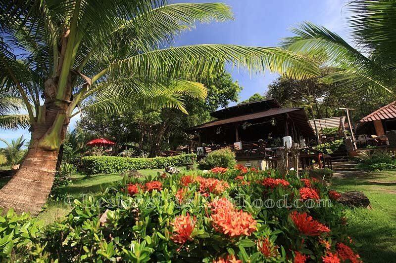 Garden / Restaurant - The Beach Natural Resort