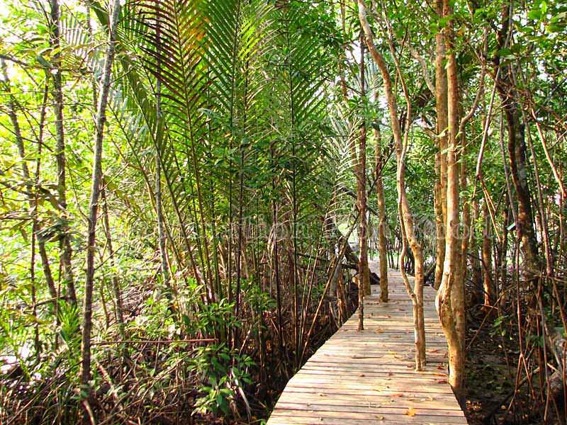 Entry from Klong Chao - Khao Rearub