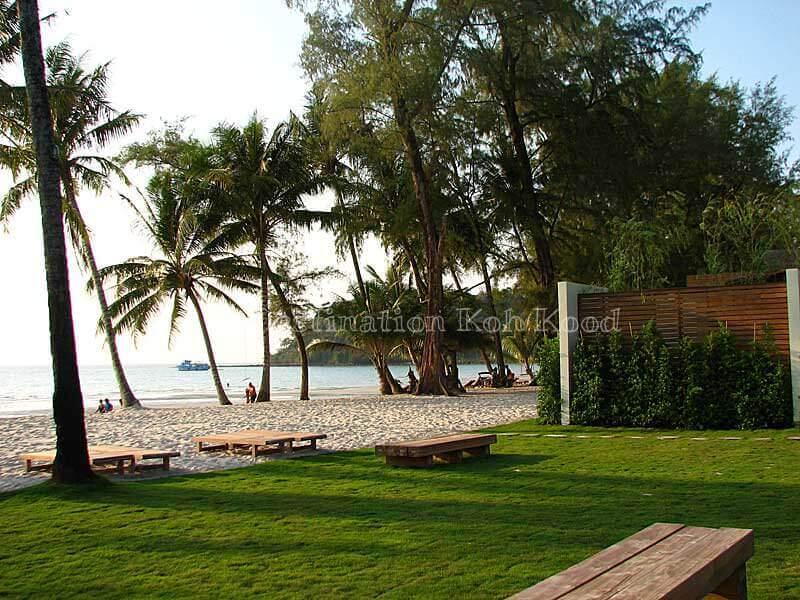 15_wendy-the-pool-resort