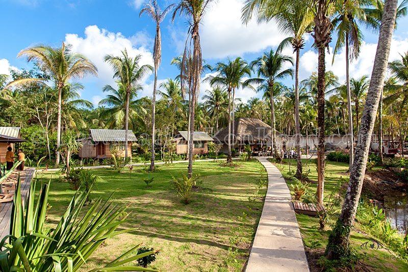 Pool Area to Lobby - Jungle Koh Kood Resort