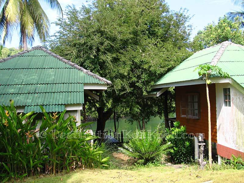 View from 2nd Row - Mangrove Bungalow