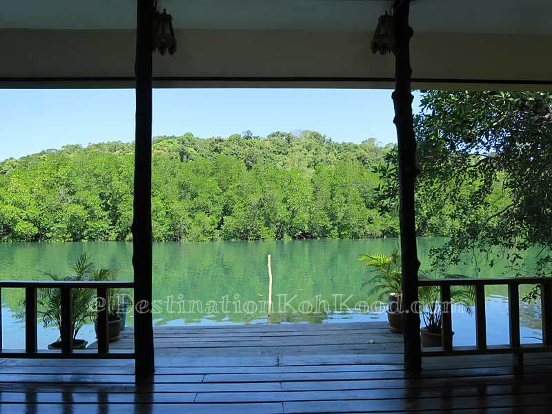 View from River Rooms - Mark House Bungalow